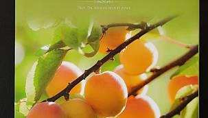 Malatya Kayısısı Kitabı Yayımlandı
